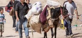 syria-refugees-660x330
