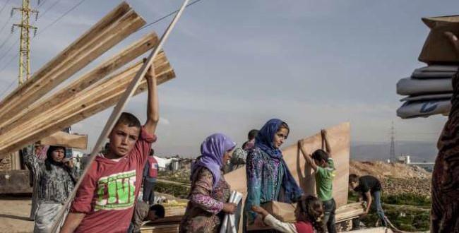 390869_Syria-refugees-650x330