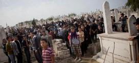 gaza_graveyard_activestills_500